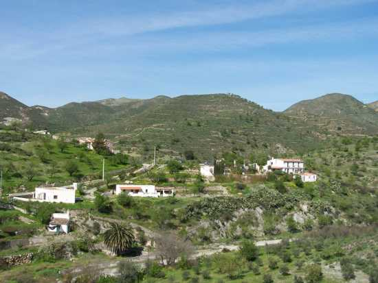 Andalucian Finca with Owner Accommodation and 5 Holiday Rental Units